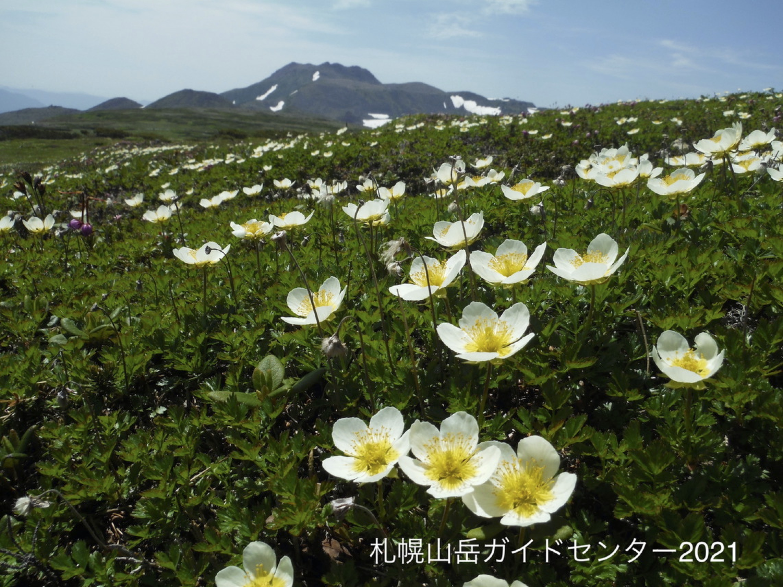 札幌山岳ガイドセンター